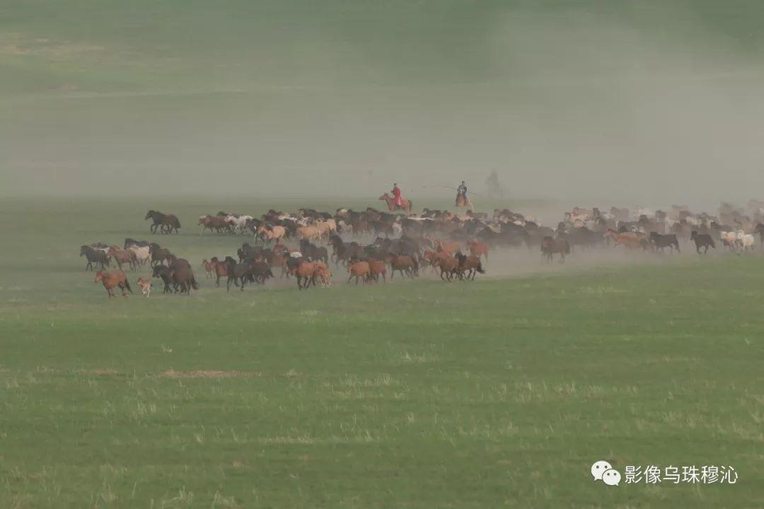 牧民摄影师宝音吉雅摄影作品欣赏 第8张 牧民摄影师宝音吉雅摄影作品欣赏 蒙古文化