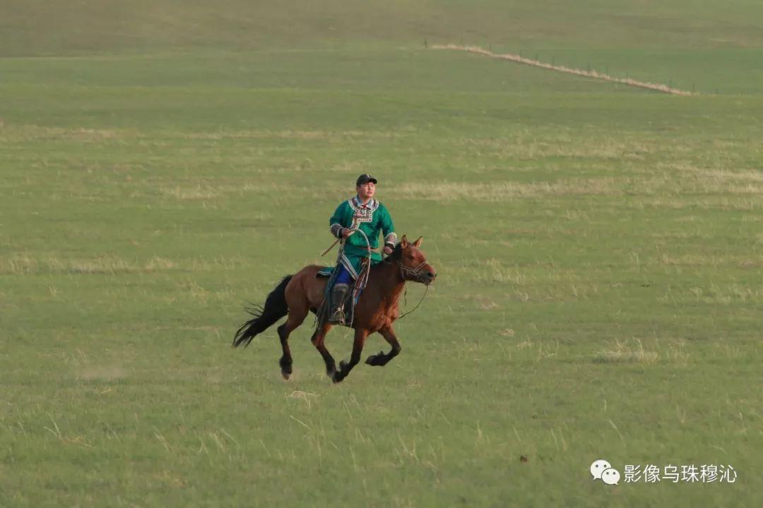 牧民摄影师宝音吉雅摄影作品欣赏 第10张 牧民摄影师宝音吉雅摄影作品欣赏 蒙古文化