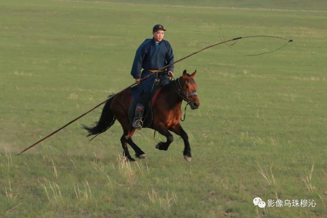 牧民摄影师宝音吉雅摄影作品欣赏 第12张 牧民摄影师宝音吉雅摄影作品欣赏 蒙古文化