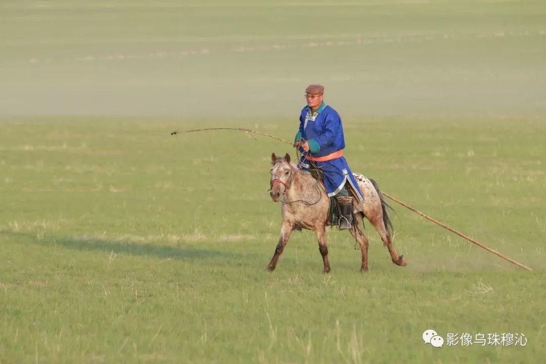 牧民摄影师宝音吉雅摄影作品欣赏 第13张 牧民摄影师宝音吉雅摄影作品欣赏 蒙古文化