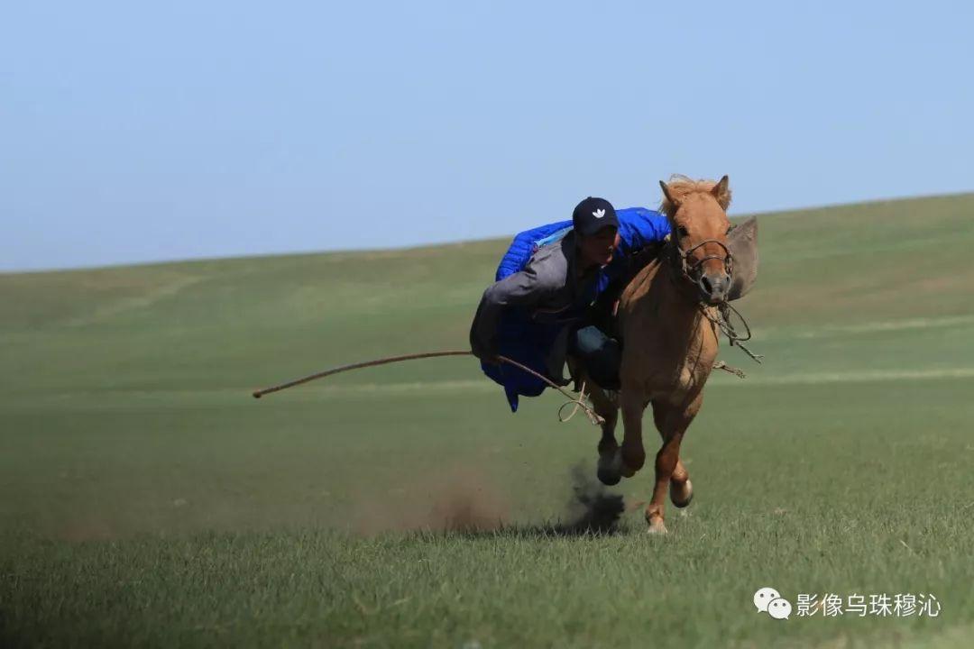 牧民摄影师宝音吉雅摄影作品欣赏 第21张 牧民摄影师宝音吉雅摄影作品欣赏 蒙古文化