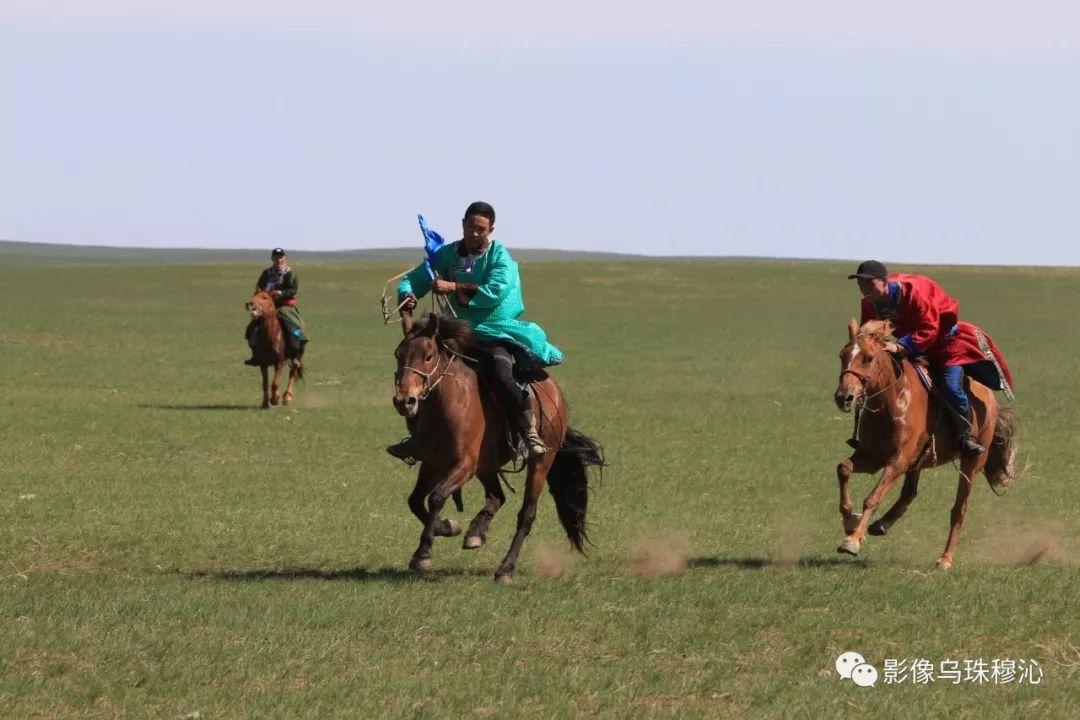 牧民摄影师宝音吉雅摄影作品欣赏 第26张 牧民摄影师宝音吉雅摄影作品欣赏 蒙古文化