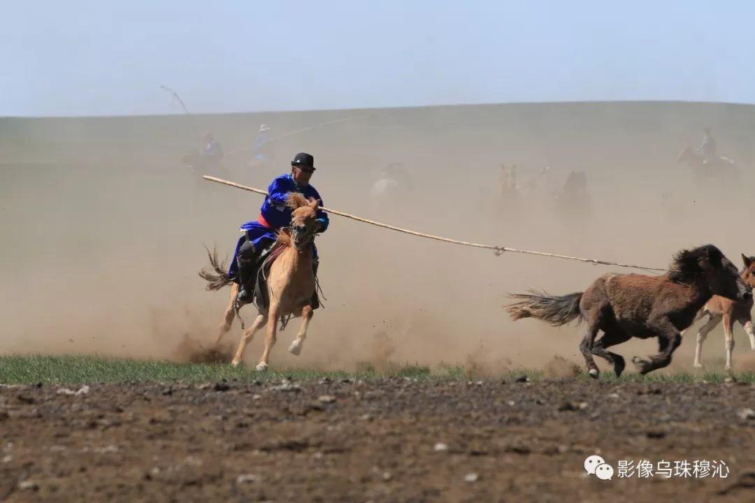 牧民摄影师宝音吉雅摄影作品欣赏 第28张 牧民摄影师宝音吉雅摄影作品欣赏 蒙古文化