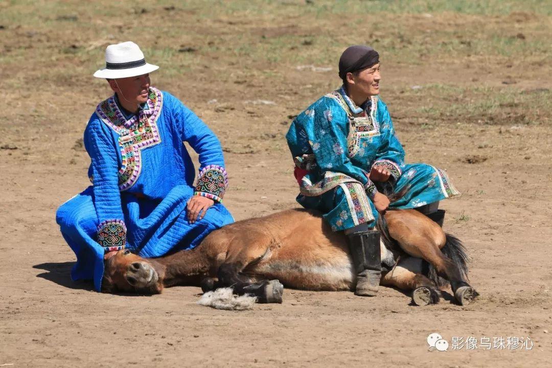 牧民摄影师宝音吉雅摄影作品欣赏 第30张 牧民摄影师宝音吉雅摄影作品欣赏 蒙古文化