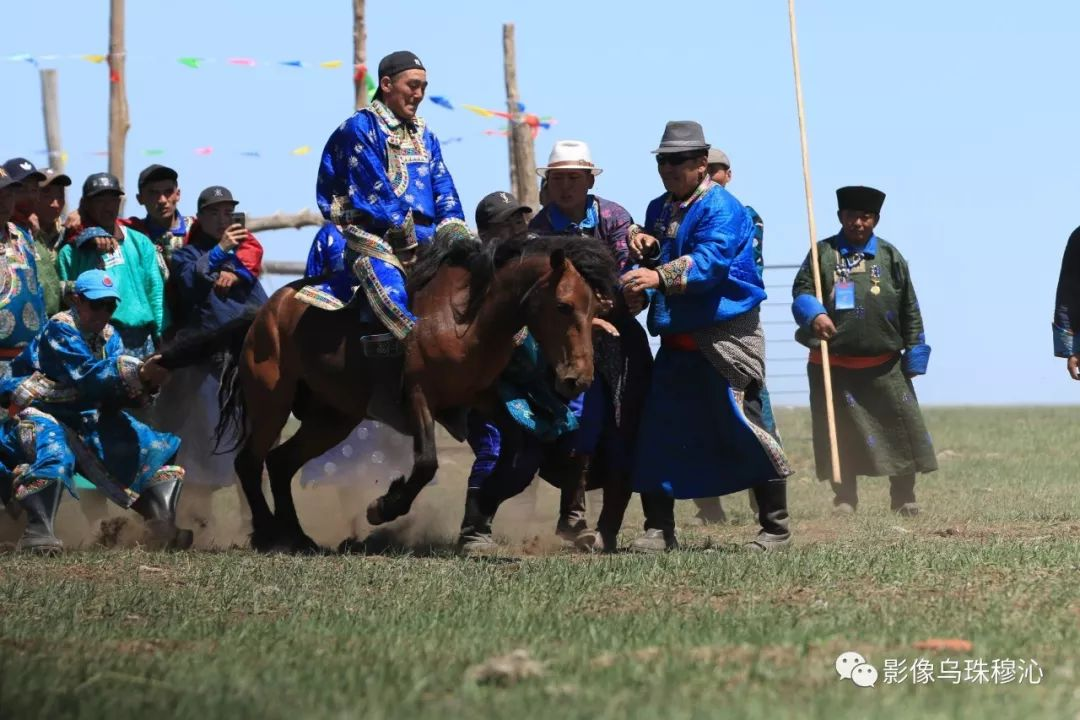 牧民摄影师宝音吉雅摄影作品欣赏 第38张 牧民摄影师宝音吉雅摄影作品欣赏 蒙古文化