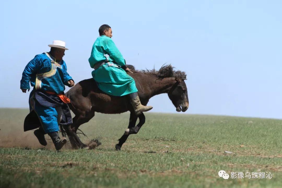 牧民摄影师宝音吉雅摄影作品欣赏 第37张 牧民摄影师宝音吉雅摄影作品欣赏 蒙古文化