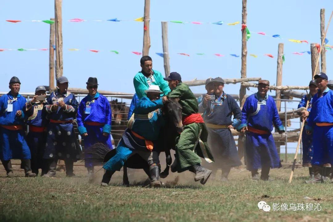 牧民摄影师宝音吉雅摄影作品欣赏 第36张 牧民摄影师宝音吉雅摄影作品欣赏 蒙古文化