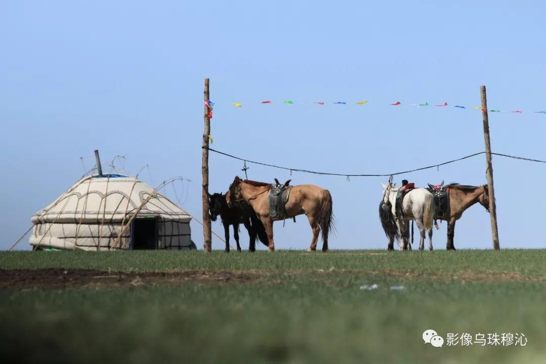 牧民摄影师宝音吉雅摄影作品欣赏 第41张 牧民摄影师宝音吉雅摄影作品欣赏 蒙古文化