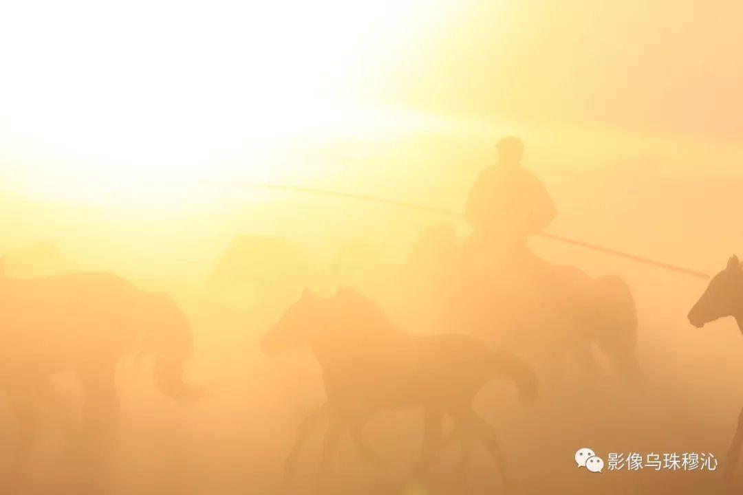 牧民摄影师宝音吉雅摄影作品欣赏 第45张 牧民摄影师宝音吉雅摄影作品欣赏 蒙古文化