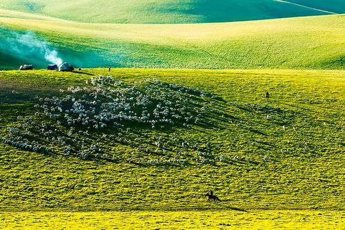 美丽的草原我的家「摄影美图」 第4张
