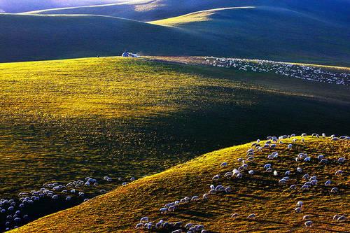 美丽的草原我的家「摄影美图」 第14张