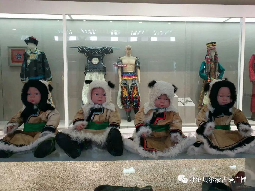 传统陈巴尔虎袍子传承人—敖登高娃 第15张 传统陈巴尔虎袍子传承人—敖登高娃 蒙古服饰