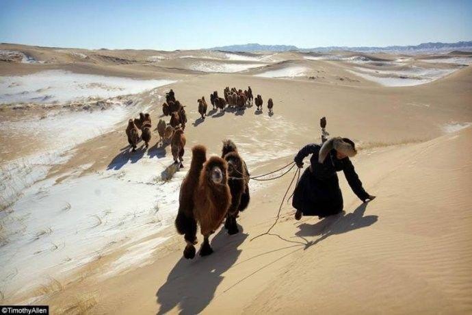 保加利亚摄影师镜头下的蒙古游牧生活 ... 第2张 保加利亚摄影师镜头下的蒙古游牧生活 ... 蒙古文化