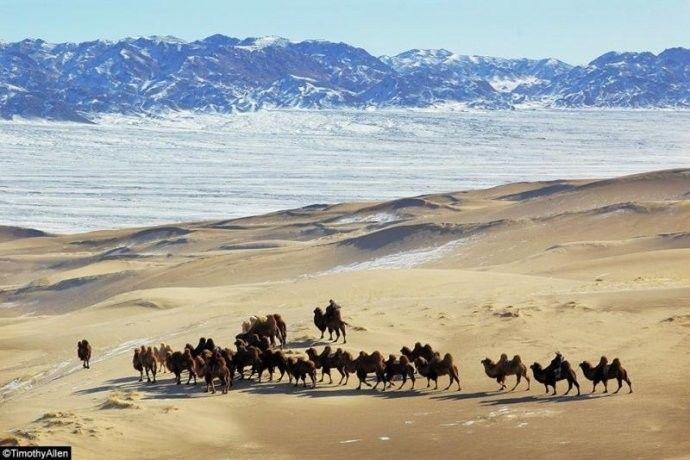 保加利亚摄影师镜头下的蒙古游牧生活 ... 第5张 保加利亚摄影师镜头下的蒙古游牧生活 ... 蒙古文化