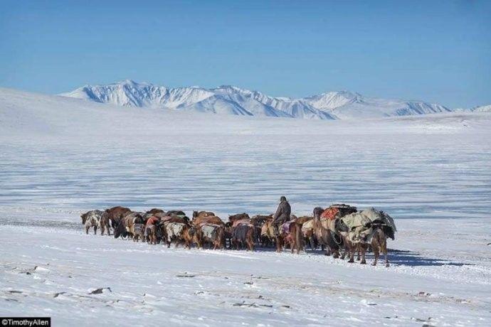 保加利亚摄影师镜头下的蒙古游牧生活 ... 第9张 保加利亚摄影师镜头下的蒙古游牧生活 ... 蒙古文化