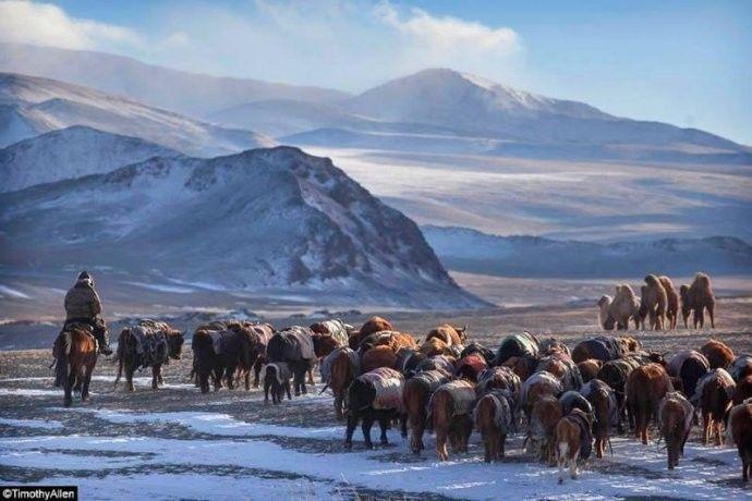 保加利亚摄影师镜头下的蒙古游牧生活 ... 第11张 保加利亚摄影师镜头下的蒙古游牧生活 ... 蒙古文化