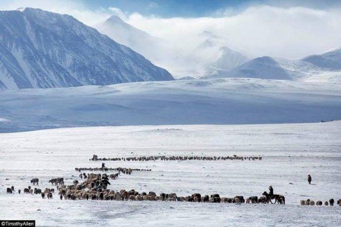 保加利亚摄影师镜头下的蒙古游牧生活 ... 第10张 保加利亚摄影师镜头下的蒙古游牧生活 ... 蒙古文化