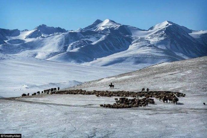 保加利亚摄影师镜头下的蒙古游牧生活 ... 第13张 保加利亚摄影师镜头下的蒙古游牧生活 ... 蒙古文化