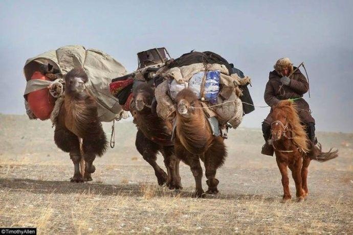 保加利亚摄影师镜头下的蒙古游牧生活 ... 第15张 保加利亚摄影师镜头下的蒙古游牧生活 ... 蒙古文化