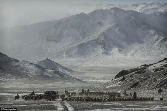 保加利亚摄影师镜头下的蒙古游牧生活 ... 第25张 保加利亚摄影师镜头下的蒙古游牧生活 ... 蒙古文化