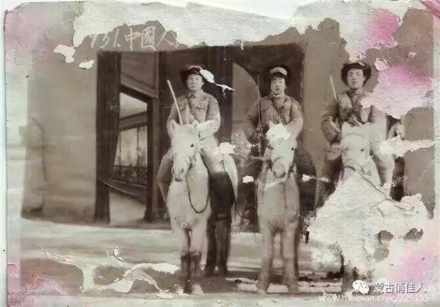 纪录片《内蒙古骑兵》观后感——内蒙古大学高明霞教授 第4张