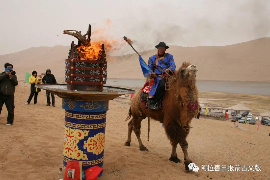 沙金达来摄影作品:沙漠之舟 第11张