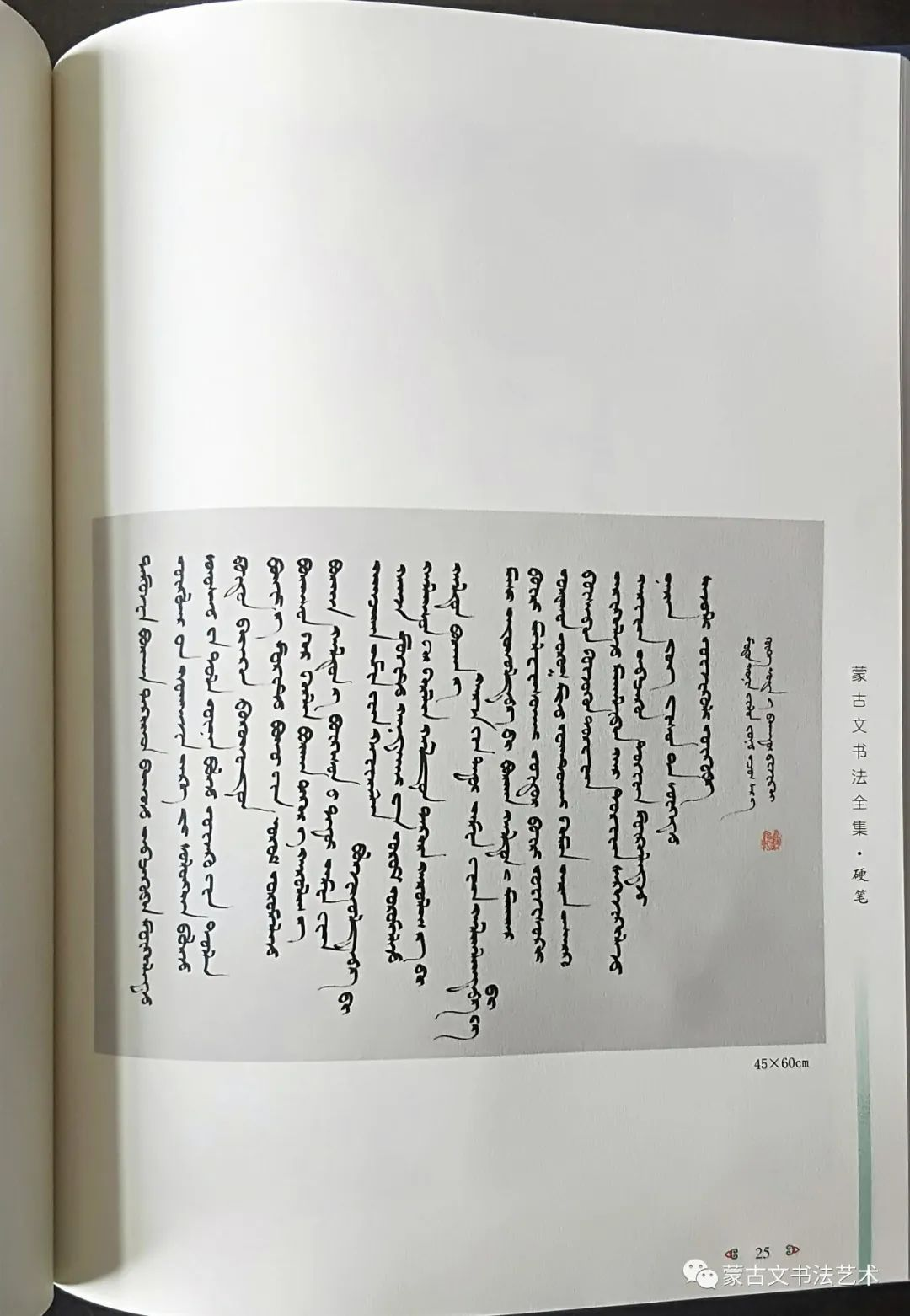 蒙古文书法全集 第24张