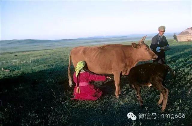 内蒙古八十年代老照片,太珍贵了 第16张