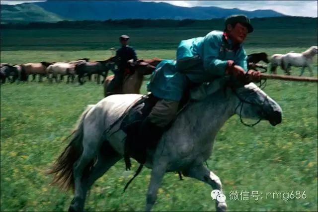 内蒙古八十年代老照片,太珍贵了 第19张