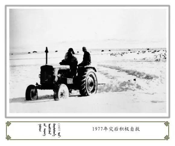 内蒙古阿巴嘎旗老照片欣赏 第24张