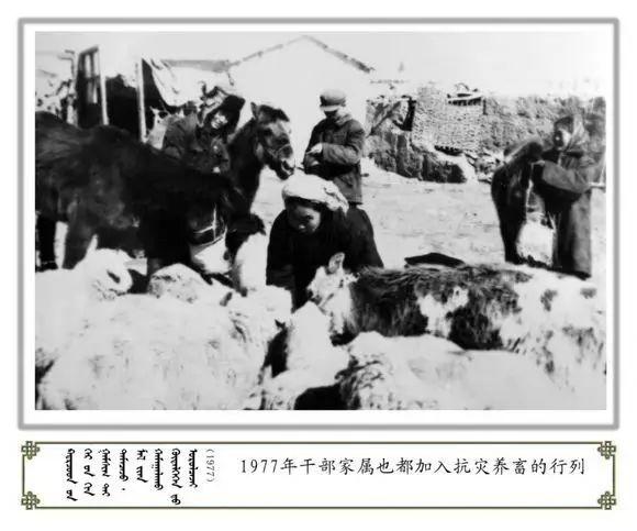 内蒙古阿巴嘎旗老照片欣赏 第27张