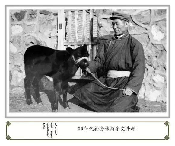 内蒙古阿巴嘎旗老照片欣赏 第40张
