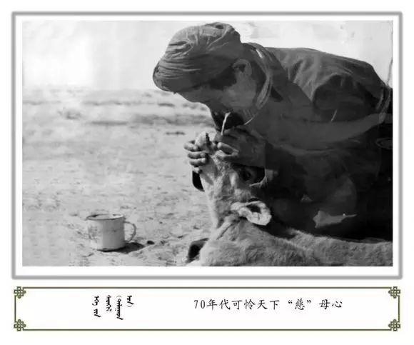 内蒙古阿巴嘎旗老照片欣赏 第46张