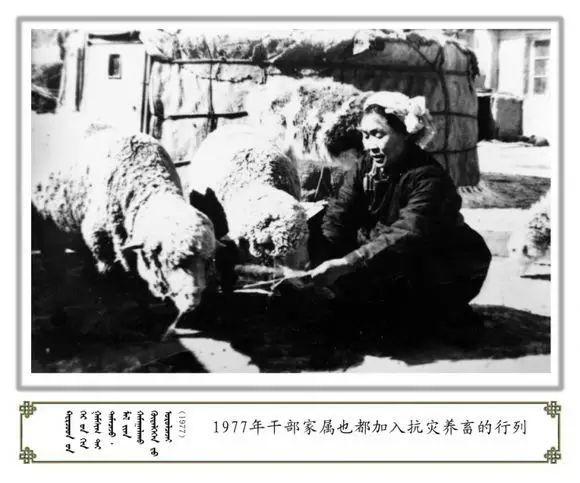 内蒙古阿巴嘎旗老照片欣赏 第49张