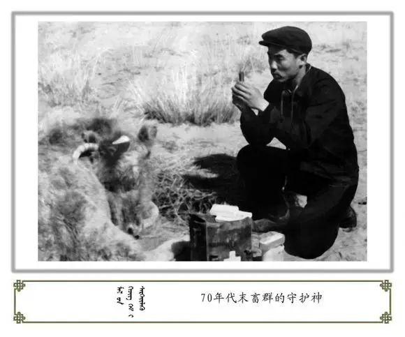 内蒙古阿巴嘎旗老照片欣赏 第67张