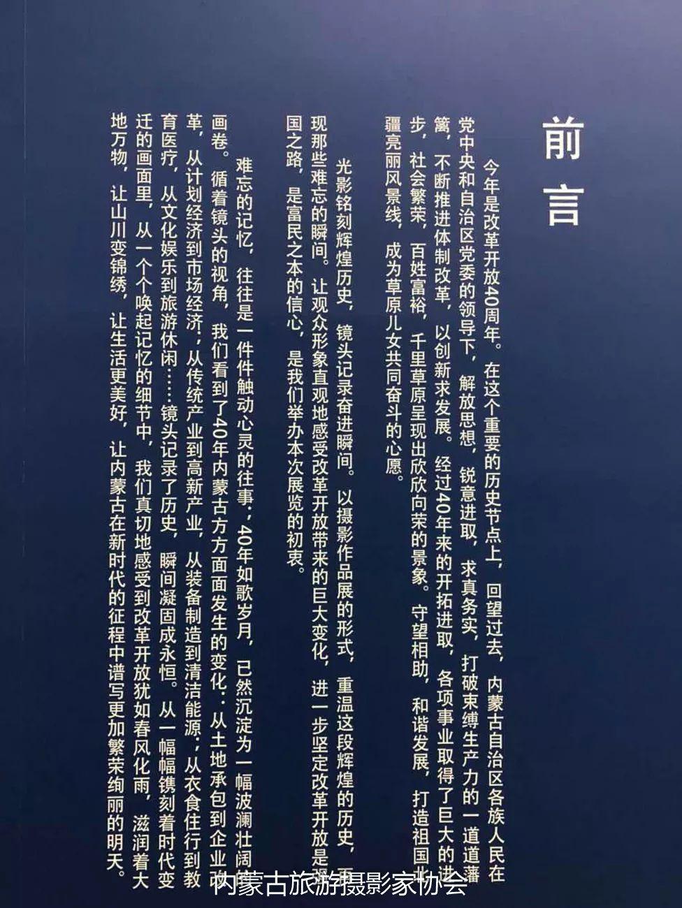 庆祝改革开放40周年 内蒙古美术、书法、摄影作品展开幕 第12张