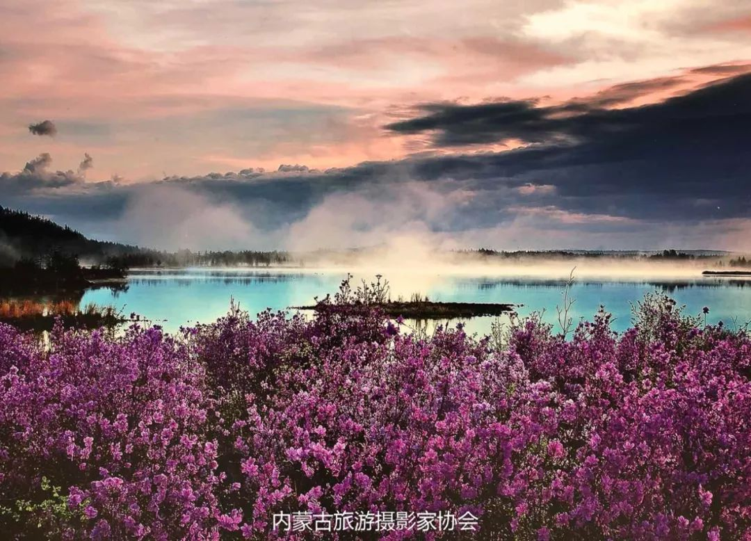 庆祝改革开放40周年 内蒙古美术、书法、摄影作品展开幕 第43张