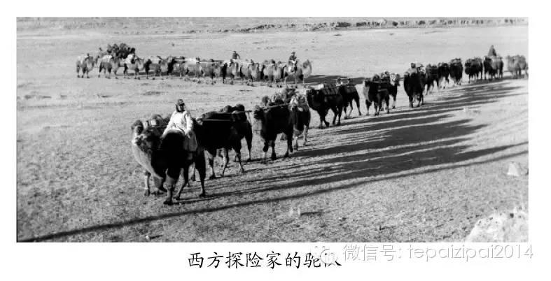 内蒙古摄影史 第9张