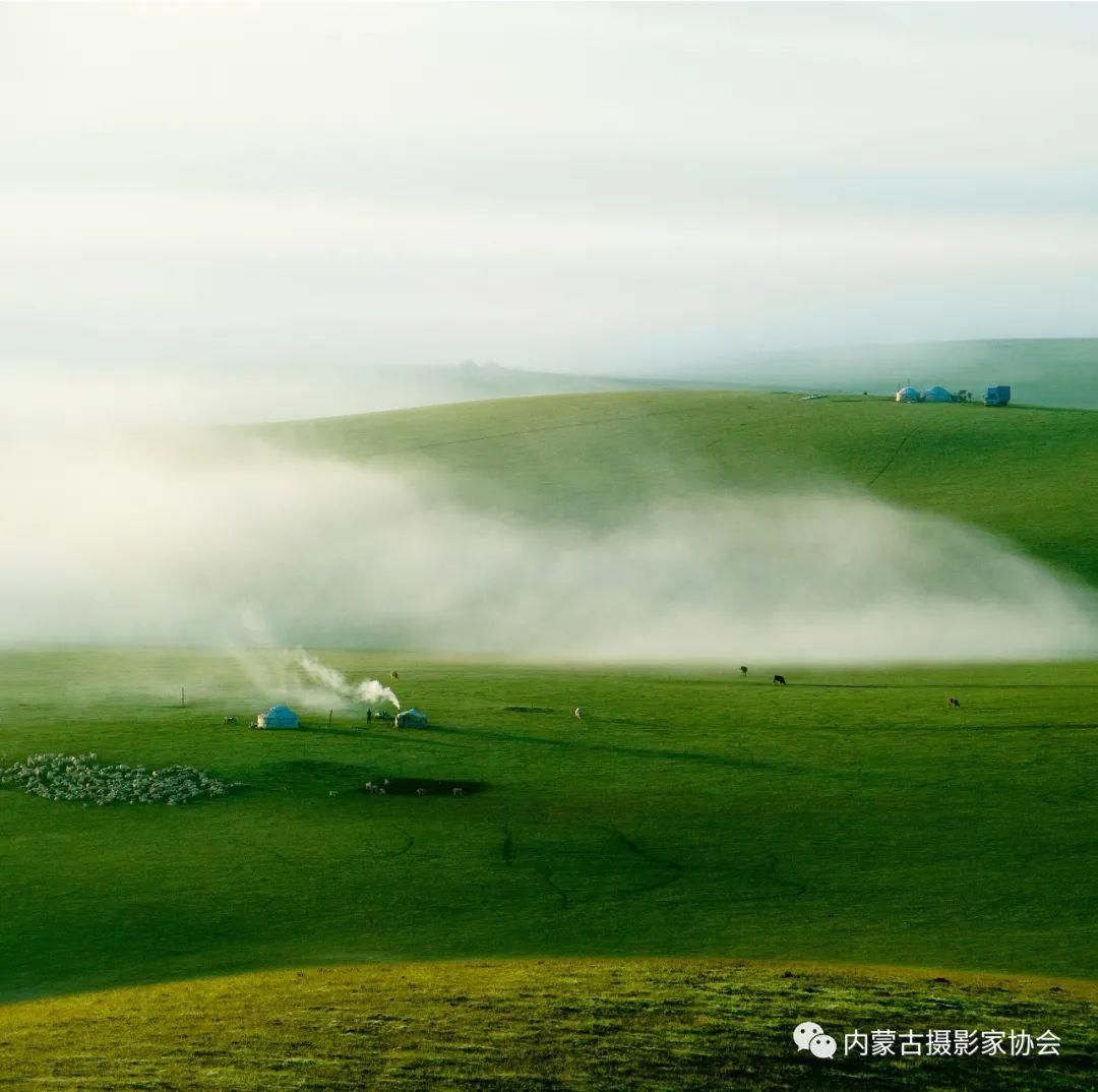 内蒙古摄影家协会原副主席王金摄影作品赏析 第15张