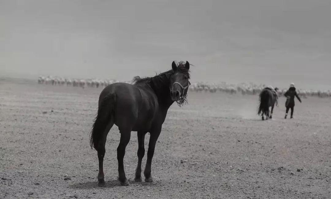 蒙古族摄影师巴音用自己的方式记录家乡